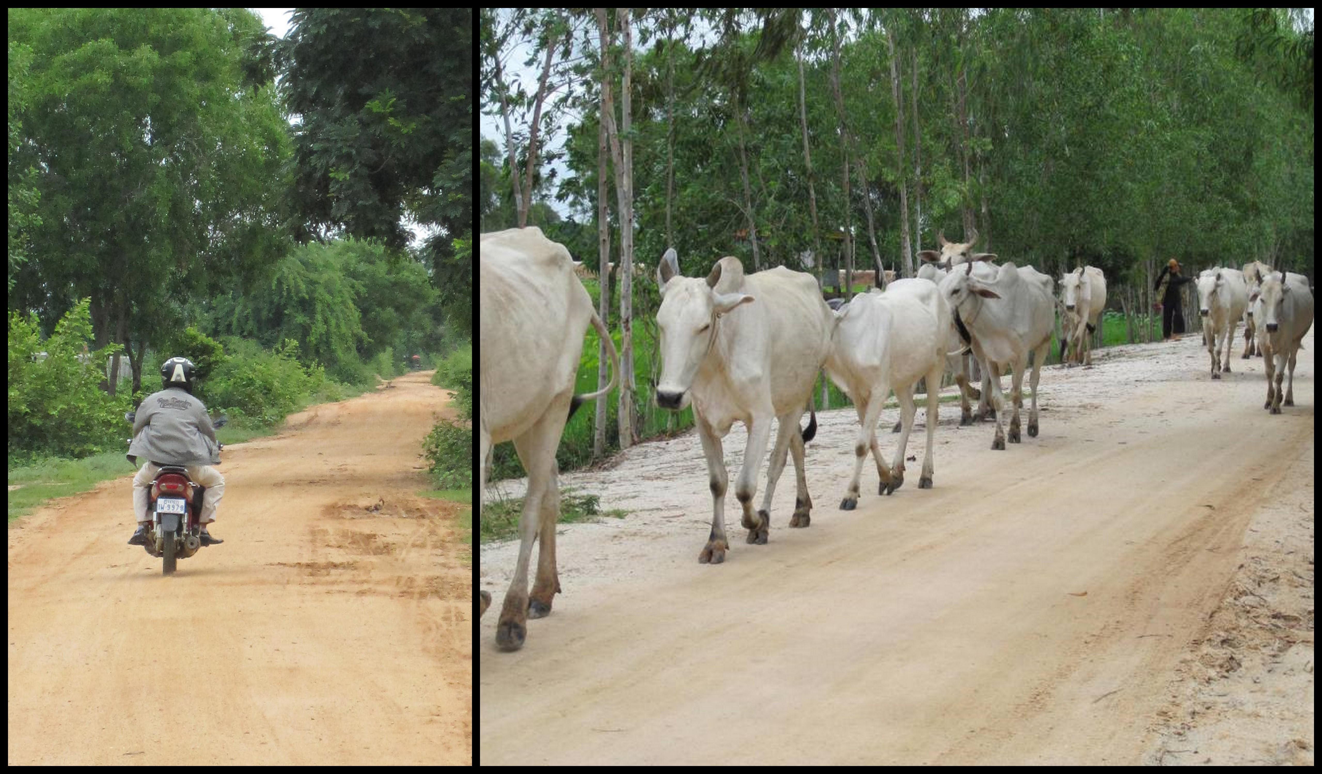 Khmer Farmer