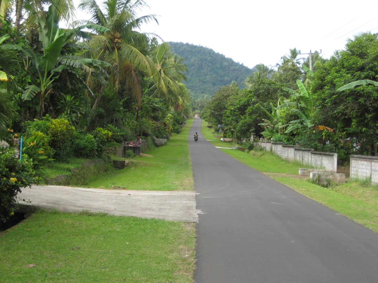 The road in Belimbingsari