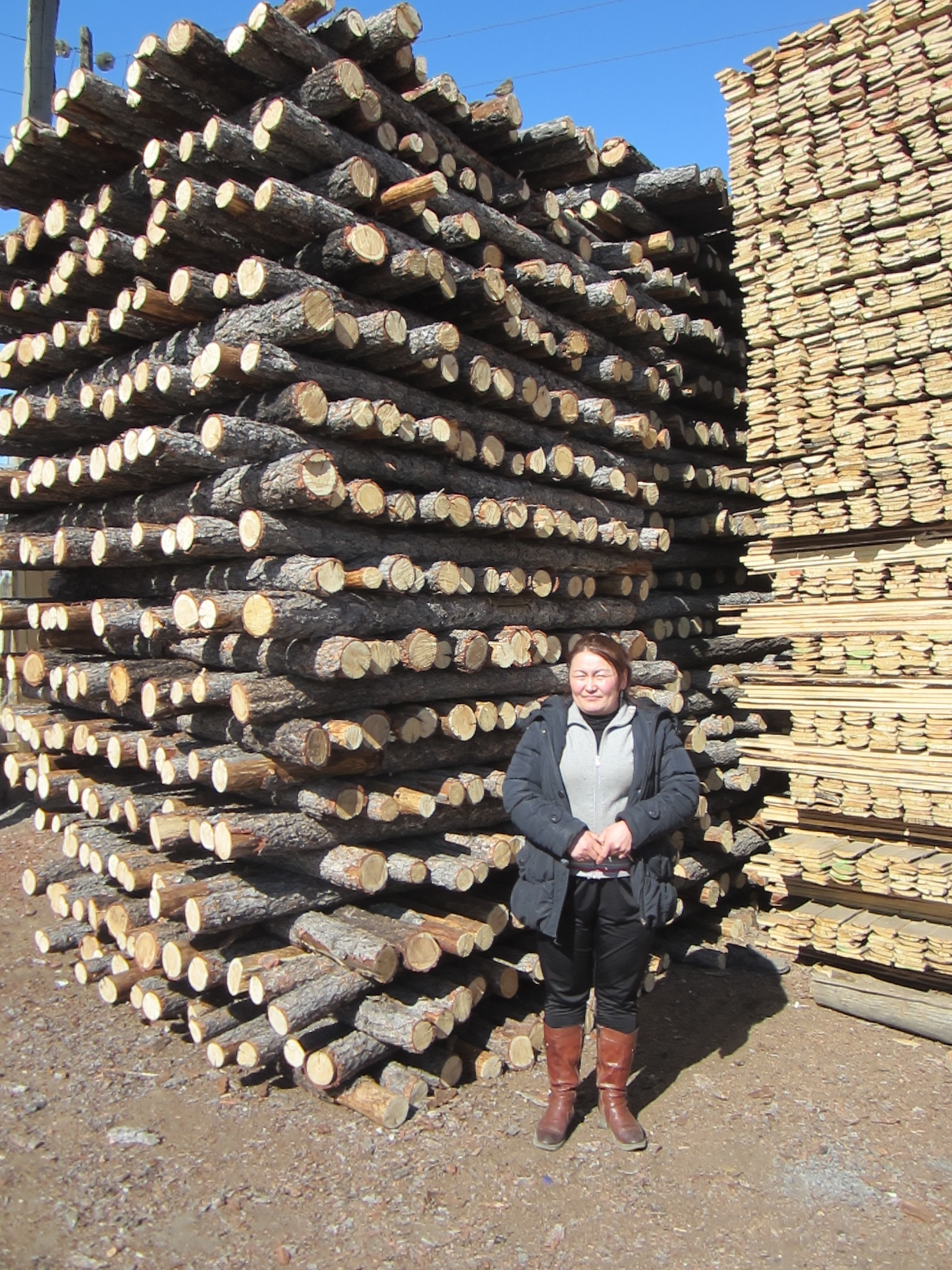 A Mongolian borrower at her wood-cutting company - Jon Hiebert, Mongolia