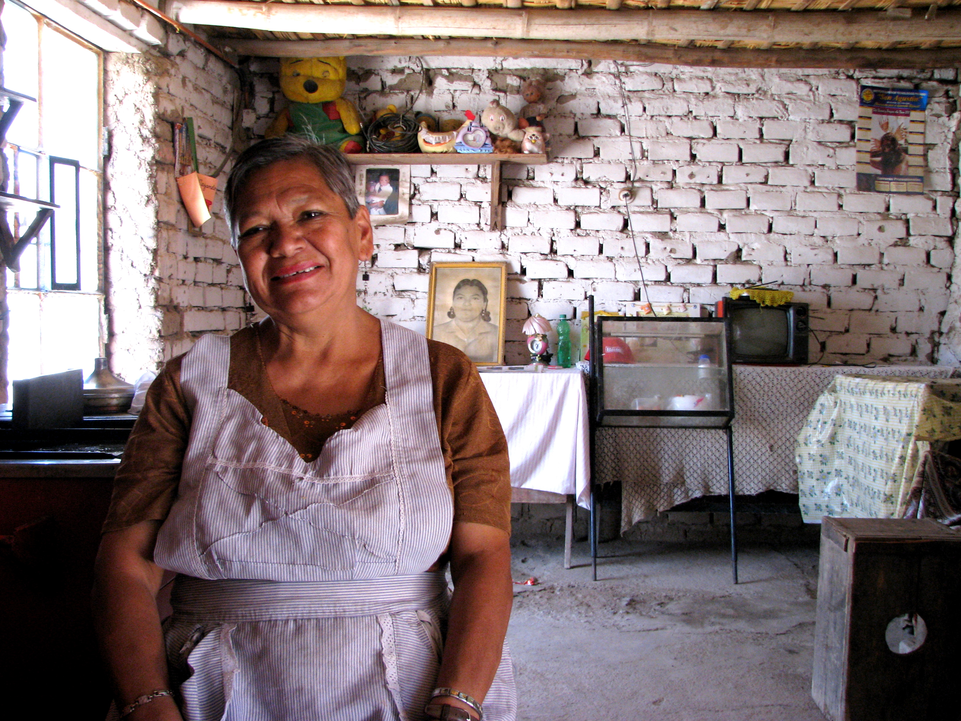 Kiva borrower María Victoria in Ica, Perú takes a break from cooking (she's making ceviche for a dinner party of 100!) to talk to me during a borrower verification