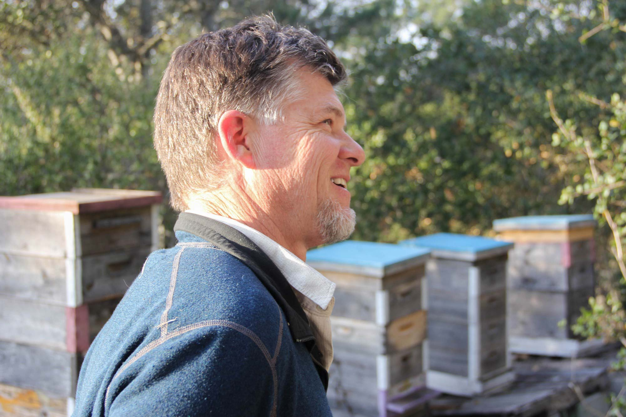 how to become a beekeeper in california